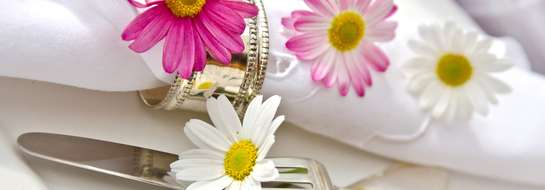 Magiczny zakątek zakochanych-Menu weselne